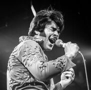 Everett, WA Elvis Impersonator | Robbie Dee's Tribute to Elvis - Hire Elvis