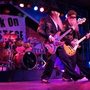 Des Plaines, IL ZZ Top Tribute Band | Eliminator