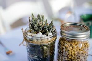 Mason Jar Potted Succulent Centerpieces