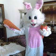 Alexandria, VA Easter Bunny | Dawn Does Characters
