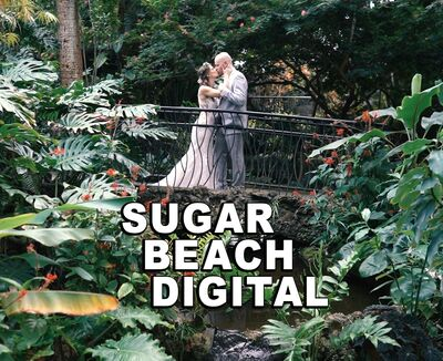 Sugar Beach Digital