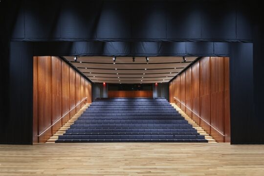 Asia Society TX Center - Performing Arts Theater - Theater - Houston, TX