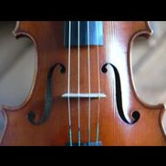 Washington, DC String Quartet | Perfect Harmony String Ensemble