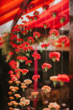Ombré Carnations Hanging from a Traditional Mandap