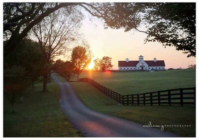 Wedding Venues In Crofton Ky The Knot