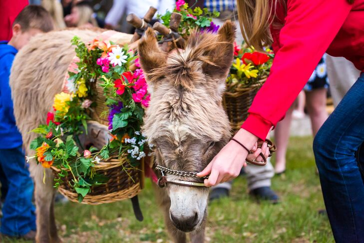 "The couple rented a pair of miniature donkeys to surprise their guests at cocktail hour.""We surprised our guests with a pair of miniature donkeys that were escorted around with baskets carrying bottled water and Houston bottled beer,"" says Lacy."