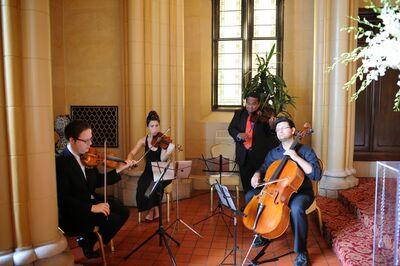 String Poets Quartets