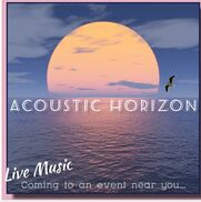 Columbus, OH Acoustic Band | Acoustic Horizon