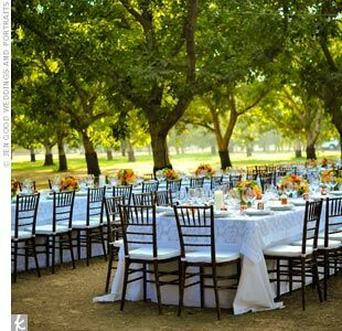 Guests sat at long tables set up in the backyard of the couple's close family friend. A vast walnut grove provided a stunning natural backdrop for the outdoor dining area.