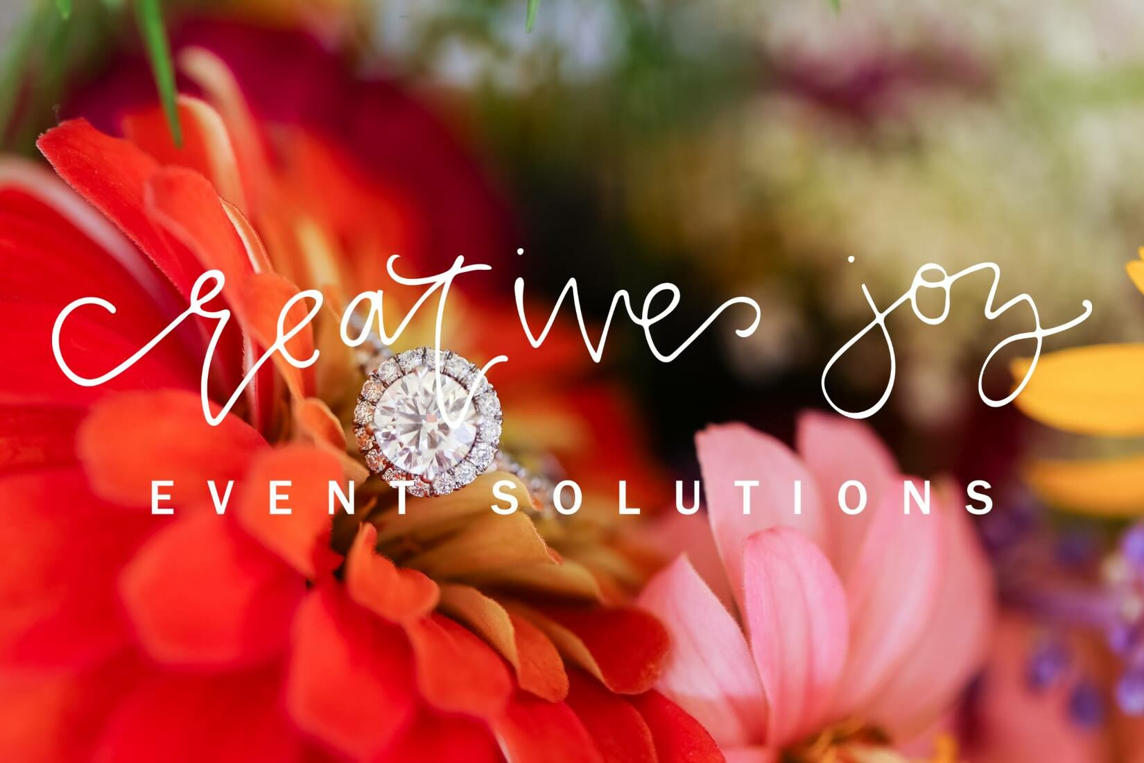Wedding Planners in Milwaukee, WI - The Knot
