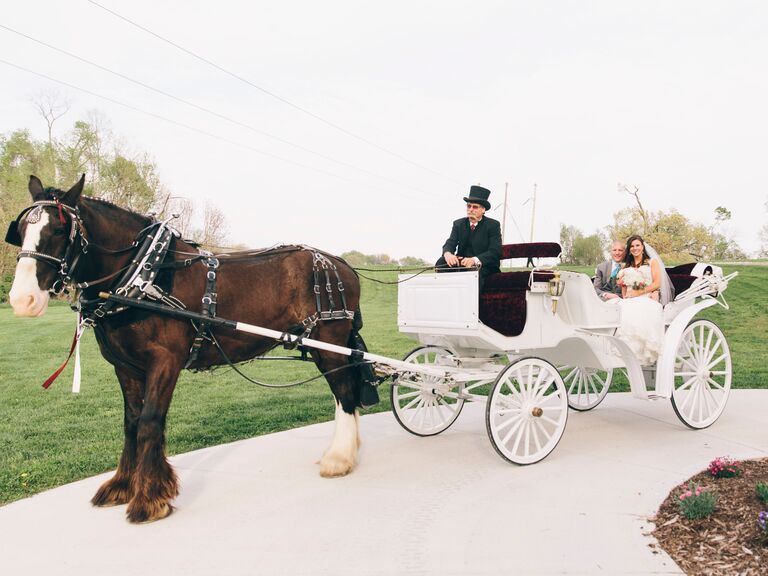 Classic Horse-Drawn Carriage