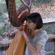 Fort Worth, TX Classical Harp | Maia Wright Jourde
