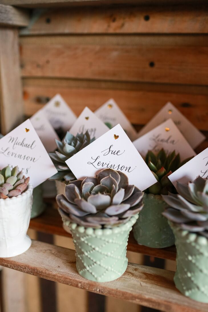 Each guest's place card and table number was attached to a small potted succulent, which they kept as a wedding favor.