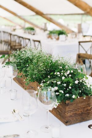 Green DIY Centerpieces in Wooden Planters