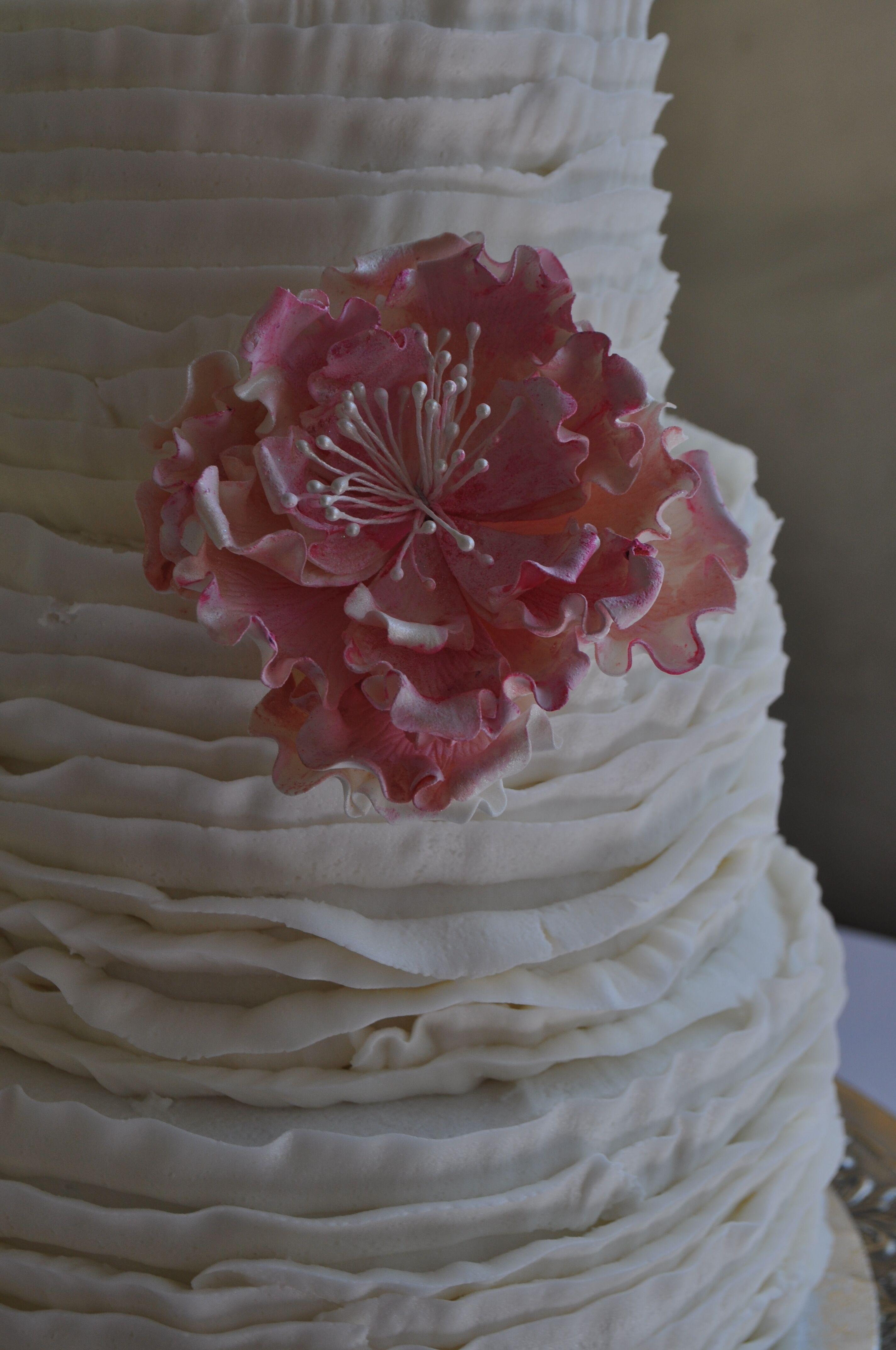 alice u0026 39 s piece of cake  llc