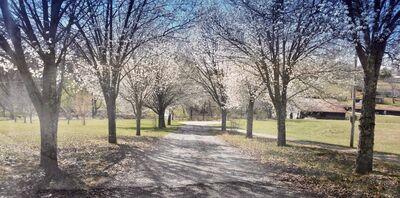 Dogwood Farms A Wedding & Event Venue & Vacation Rental