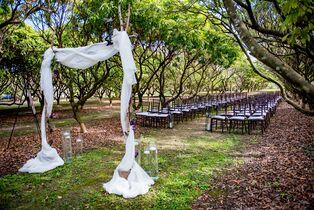 Vineyard Amp Winery Wedding Venues In West Palm Beach Fl