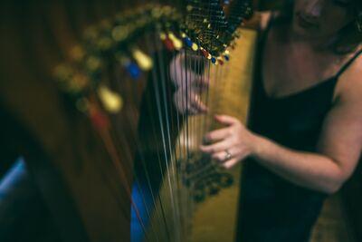 Eryn Jones Fuson - Indie Harpist