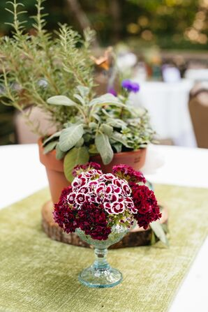 DIY Mixed Potted Plant Centerpieces
