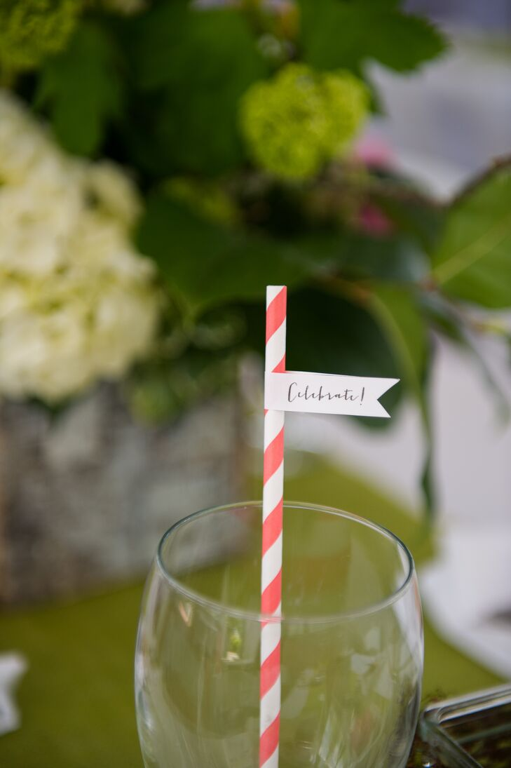 Striped Straws with Pendant Flags