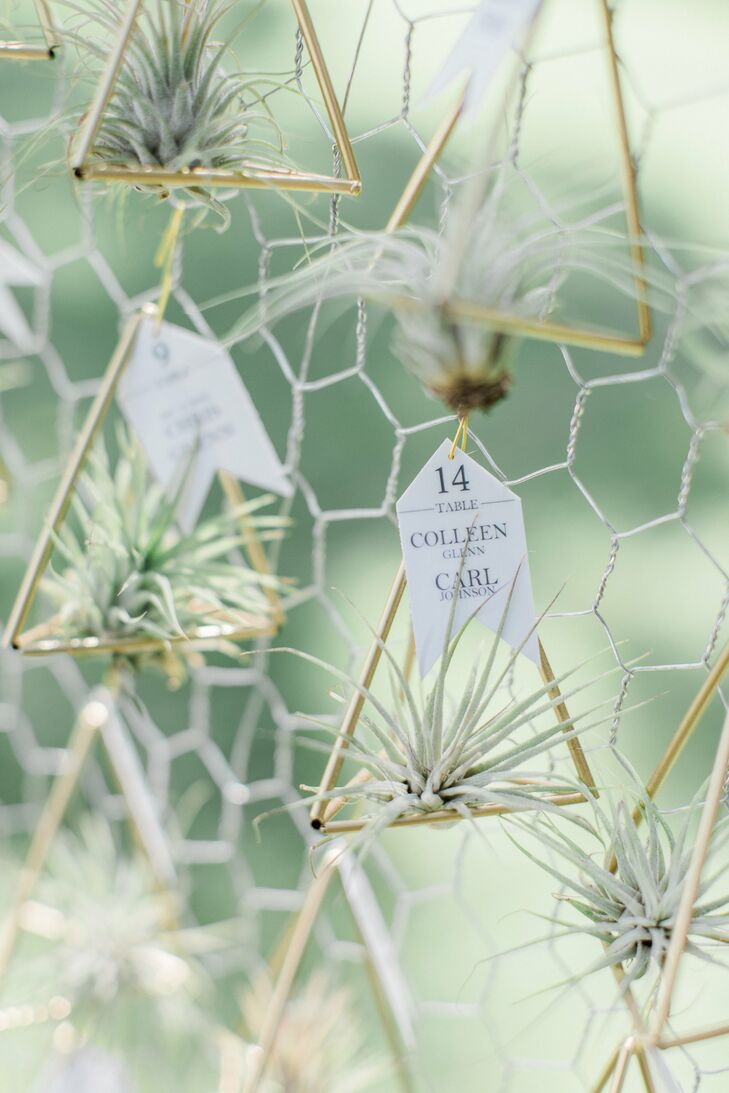 Air Plant Escort Cards Displayed in Geometric Holders