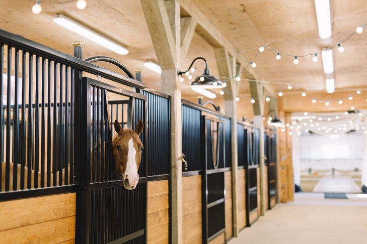 """In order to get to the arena, where the tables were situated, guests were greeted by horses sticking their heads out the stall doors. """"They were everyone's entertainment,"""" Oriana says. """"I think they were in more photos that night than Adam and I."""""""
