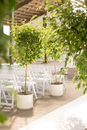 White Folding Chairs and Aisle Lined with Potted Trees