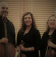 Schertz, TX Classical Trio | Live Oak String Trio