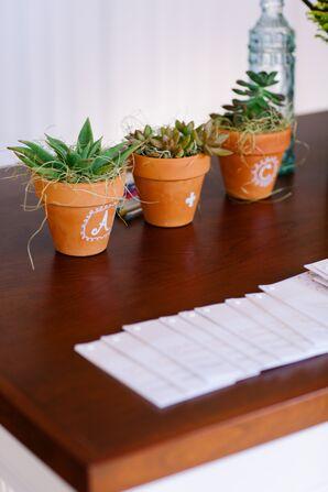 Succulents at Reception