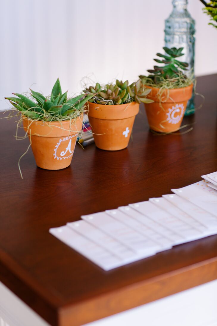 Succulents at Reception