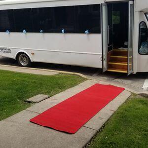 Schaumburg, IL Party Bus | Millennium Chicago Limousine / party bus
