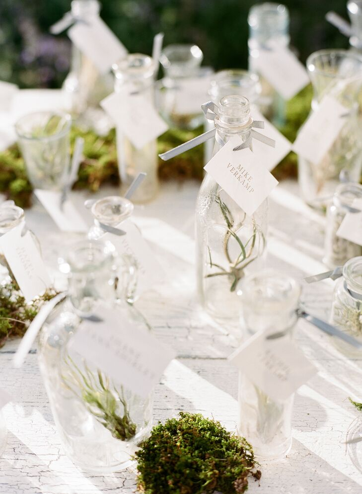 Cards Were Attached To Vintage Vases And Bottles That Filled With Miniature Air Plants