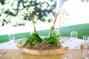 White-Washed Boat and Orchid Centerpieces