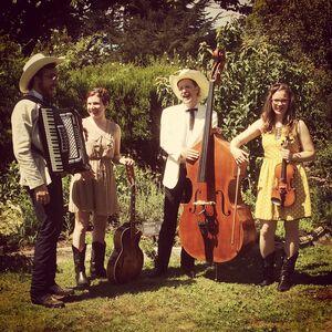 San Francisco, CA Americana Band   The Vivants