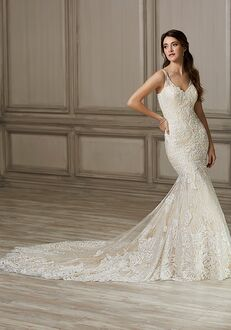 Adrianna Papell Platinum Kennedy Mermaid Wedding Dress