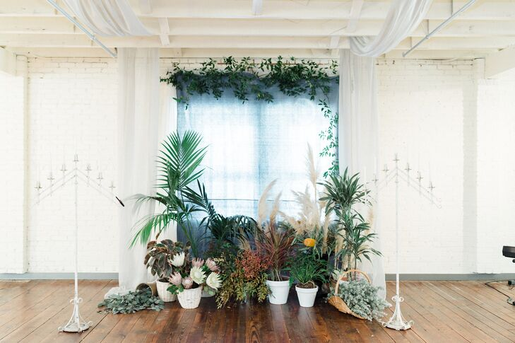 Modern Ceremony Backdrop with Ferns, Pampas Grass, Protea and Ivy