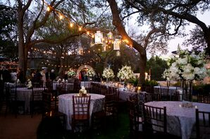 Reception Under the Trees