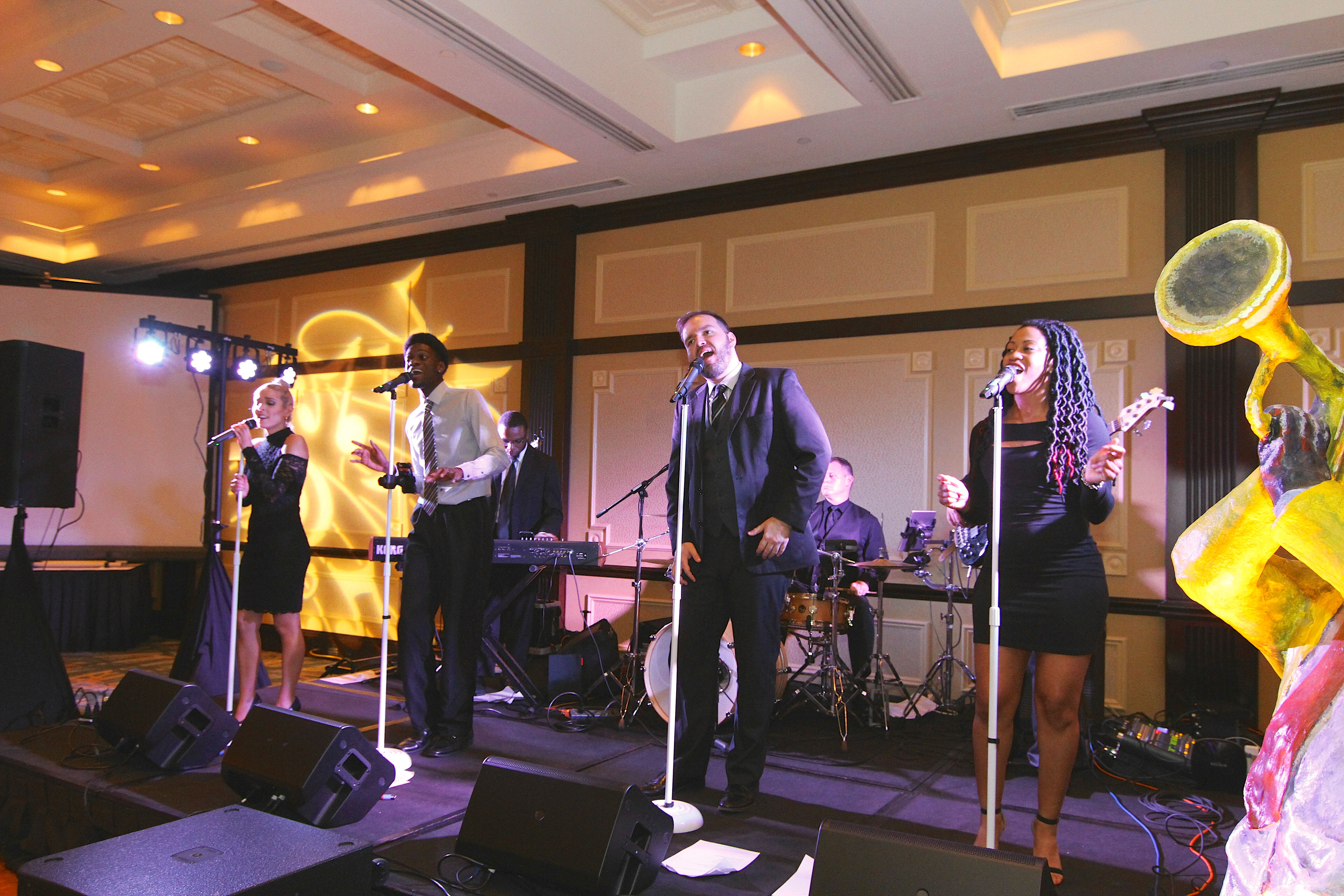 Live Wedding Bands In Tampa Fl The Knot