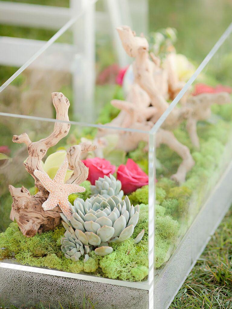 Succulent Centerpiece Ideas