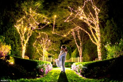 Majestic Gardens