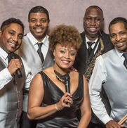 Memphis, TN Dance Band | Soul Shockers