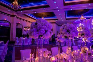 Wedding reception venues in orlando fl the knot wyndham grand orlando resort bonnet creek junglespirit Images