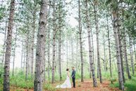 """For their formal forest nuptials, Rachel and Brent wanted to have """"the fanciest picnic of all time."""" A timeless color palette of white, gold and blue"""
