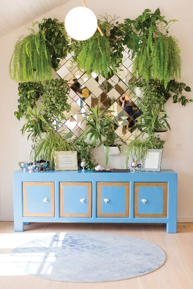 wedding guest book table bright blue dresser decorated with plants hanging from ceiling and on walls