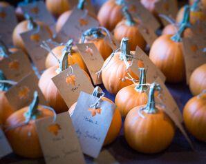 DIY Baby Pumpkin Escort Cards