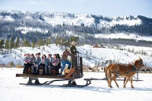 Winter Horse-Drawn-Carriage Transportation