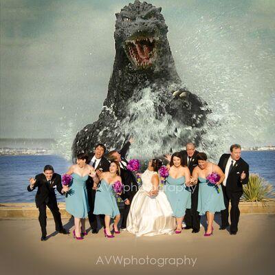 AVW Photography