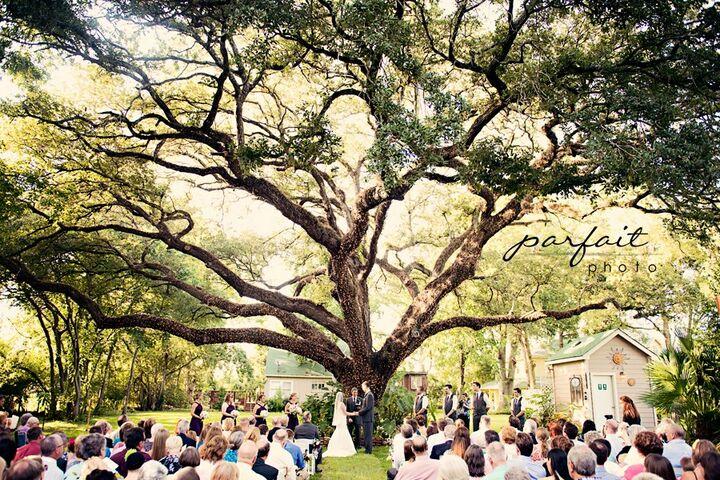 Oak Tree Manor Wedding Venue Spring Tx