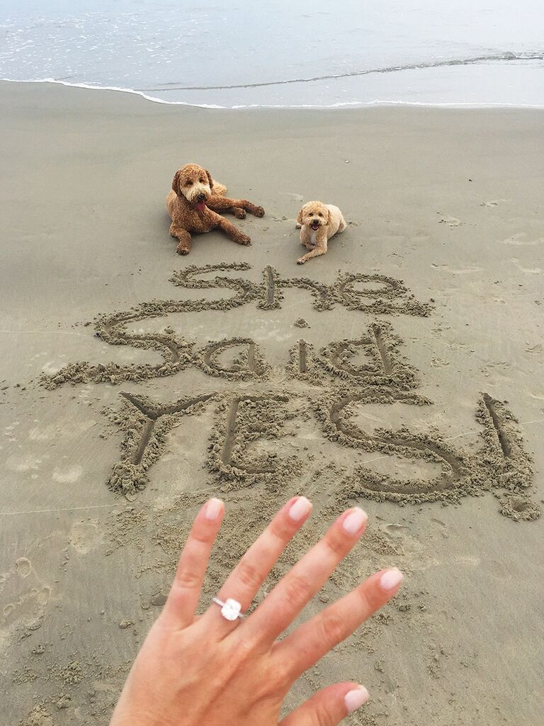 Engagment ring selfie idea with pets