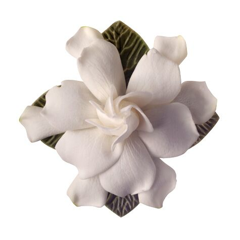Wedding flower guide with season color and price details white gardenia flower mightylinksfo